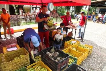 Vendidas tres toneladas de alimentos  en jornada de Los Godos