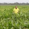 Inspeccionan cultivos en Santa Inés V y Altamira